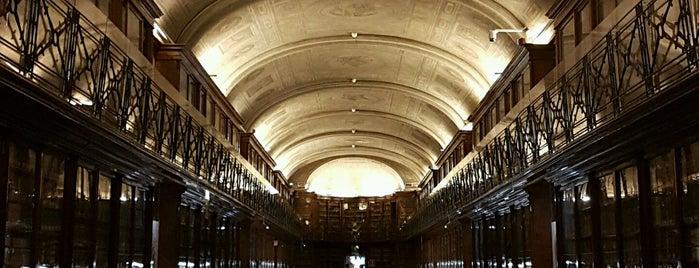 Biblioteca Reale is one of Torino.