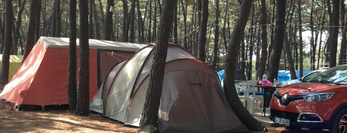 Erikli Camping is one of Kamp yerleri.