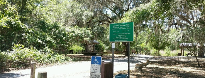 Gainesville Hawthorne Trail is one of Parks & Trails.