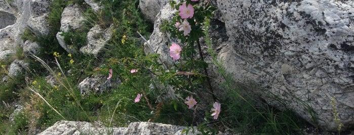 Vackor-szikla is one of Budai hegység/Pilis.