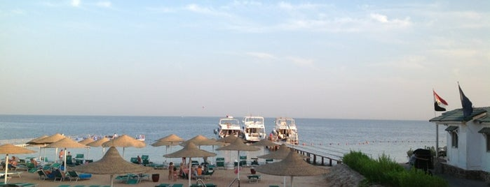 Sheikh Coast Diving Centre is one of Be Charmed @ Sharm El Sheikh.