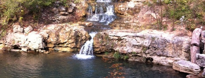 Dogwood Canyon Nature Park is one of Best Places to Check out in United States Pt 3.