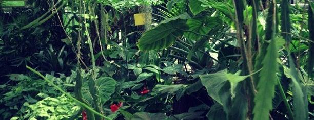 Botanischer Garten der Universität Potsdam is one of Grün und Blau Berlin.