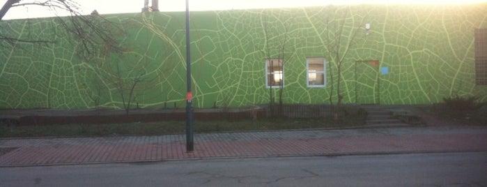 Ekomural is one of Street Art w Krakowie: Graffiti, Murale, KResKi.