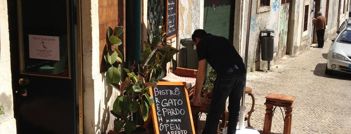 Gato Pardo is one of Lisbon city guide.