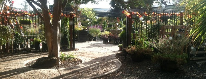 Great Welcome To The Chico Garden Center Source · Chico Garden Centers