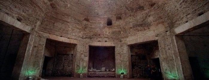 Domus Aurea is one of 101 cose da fare a Roma almeno 1 volta nella vita.