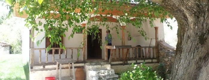 Kerimoğlu Türküsü Evi is one of Cennet ve İlçeleri.