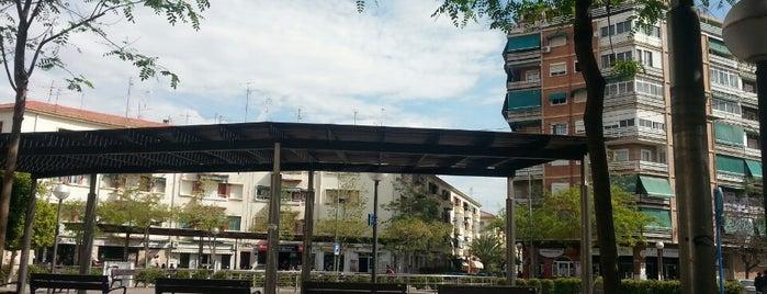 Plaza Manila is one of Alicante (plazas y jardines).