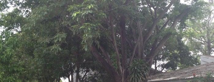 Centro de Entrenamiento INEM-CB&I-REFICAR is one of Aquí Se debería Poder Rayar las Paredes.