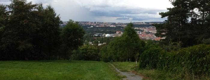 Žižkovské lesy is one of Gardens, Parks and Forests in Prague.