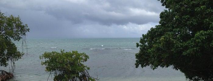 Santorini Ocean Lounge Restaurant is one of Puerto Rico Restaurants.