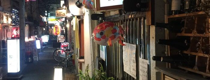 十六夜 is one of 阿佐ヶ谷スターロード.