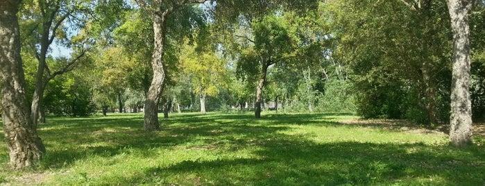 Parque del Alamillo is one of Top 10 favorites places in Sevilla, España.