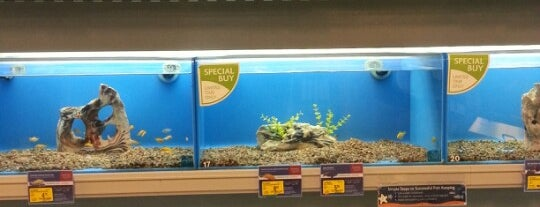 PetSmart is one of place I go.