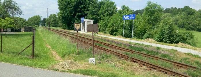 Železniční zastávka Peklo nad Zdobnicí is one of Železniční stanice ČR: P (9/14).