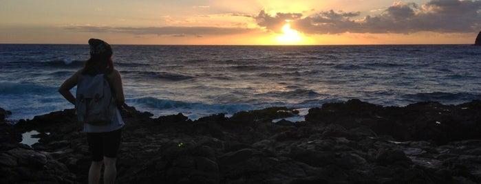 Tidepools at Makapu'u is one of Oahu in 2018.