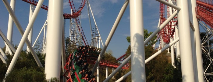 Viper is one of Six Flags Magic Mountain Roller Coasters.