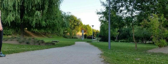 Parque da Cidade Penafiel is one of Locais Favoritos.