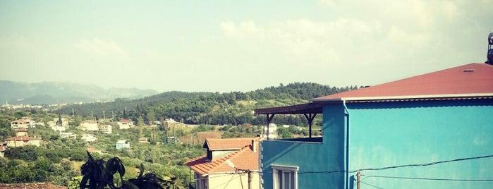 Dürdane is one of Bursa | Osmangazi İlçesi Mahalleleri.