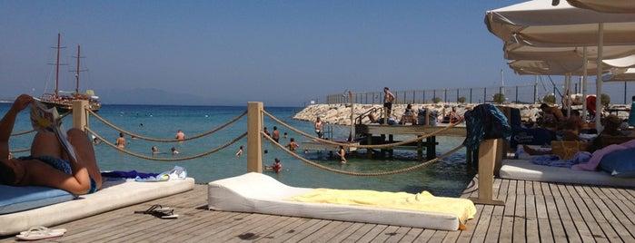 D-Marin Blue Point Beach Club is one of İzmir.