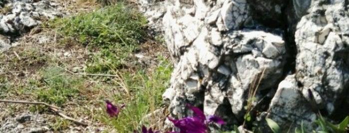 Csúcs-hegy is one of Budai hegység/Pilis.