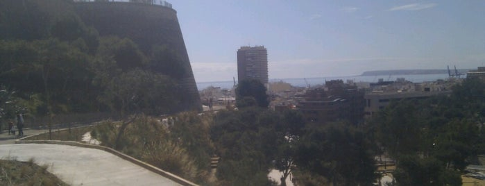Parque Doctor Rico is one of Alicante (plazas y jardines).