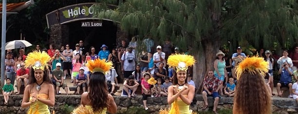 Polynesian Cultural Center is one of 하와이.