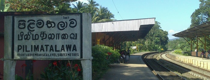 Pilimathalawa Railway Station is one of Railway Stations In Sri Lanka.