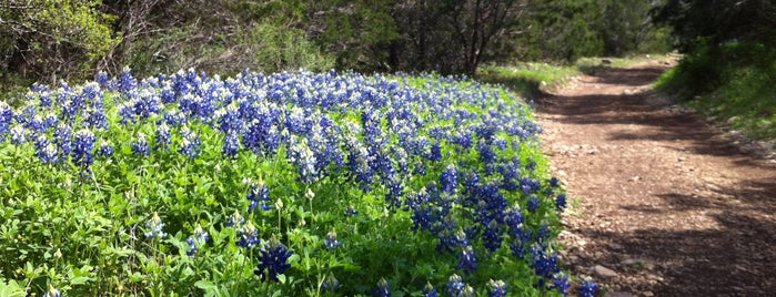 Government Canyon State Natural Area is one of The 15 Best Places for Biking in San Antonio.