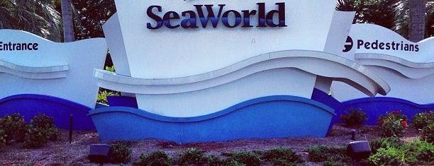 SeaWorld Orlando is one of Florida.