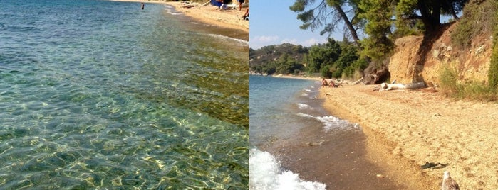 Elea Beach is one of 🌞🌊Chalkidiki-->to The Beach 🐋🐬🐟🐠🐡🦀.
