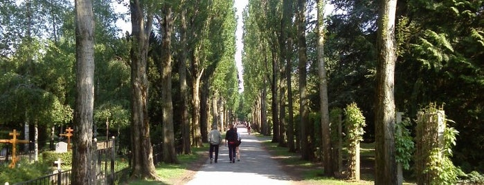 Assistens Kirkegård is one of Baltic cruise!.