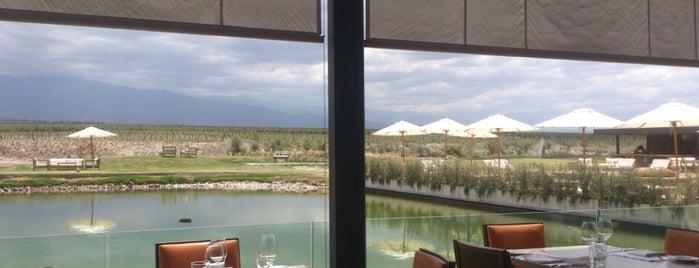 Francis Mallmann Siete Fuegos Asado at The Vines of Mendoza is one of Experience Mendoza.