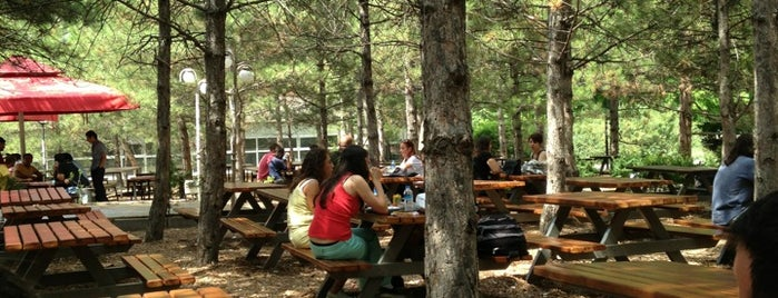 Çatı Cafe is one of Best Of Middle East Technical University.