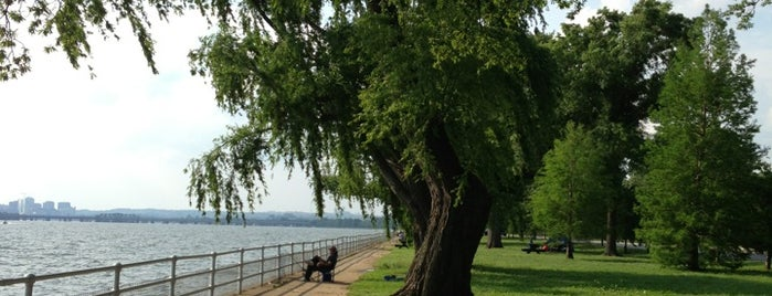 Hains Point is one of Places to fish.