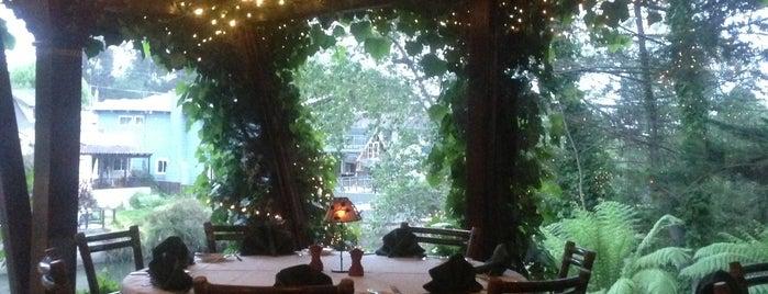 Top 10 dinner spots in Santa Cruz, CA
