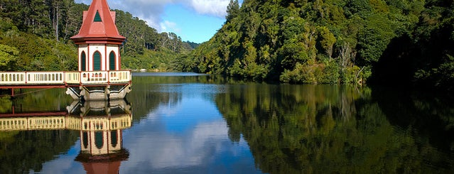 Zealandia Eco-Sanctuary is one of The coolest little capital in the world.