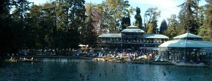 Parco Termale Villa dei Cedri is one of Terme, spa e beauty center.