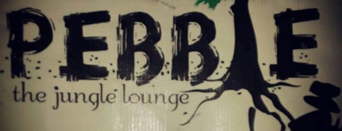 Pebble is one of beer bash.