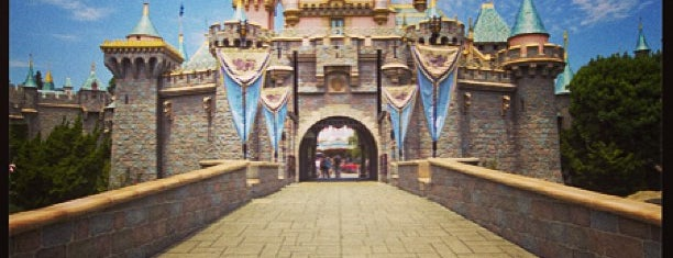 Disneyland is one of Favorite Area Attractions.