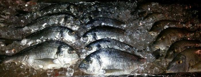 Ocean Fish Market is one of Tafila.