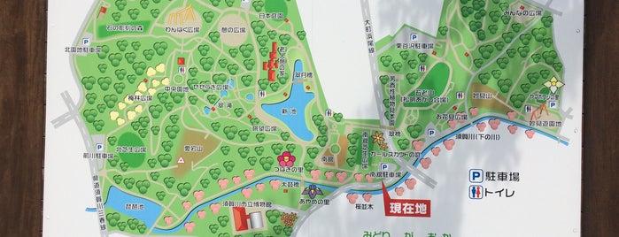 翠ケ丘公園 is one of 日本の都市公園100選.