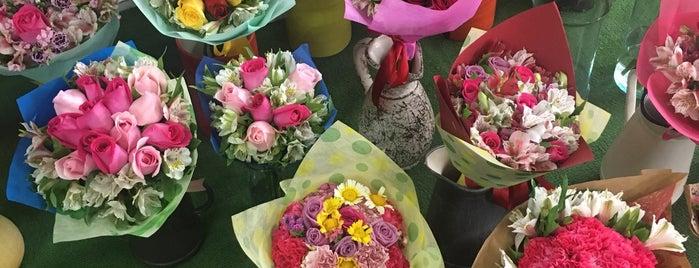 Florería en Oaxaca