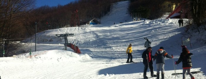 Pilio Ski Center is one of Skiing and Snowboarding in Greece.