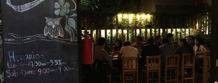 Cafe el Patio is one of Los chonitos ❤️.