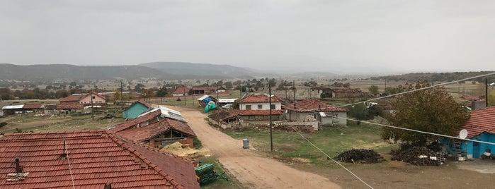 Sakaçiftliği is one of Kütahya   Merkez Köyler.