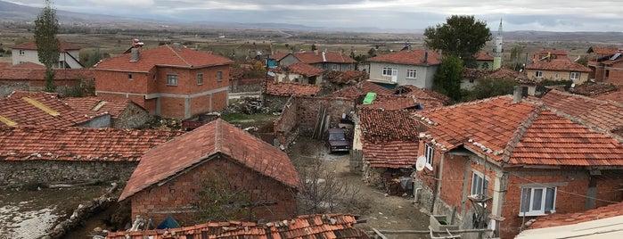 Geven is one of Kütahya'nın Mahalleleri.