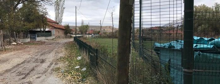 Gevrekseydi is one of Kütahya | Merkez Köyler.