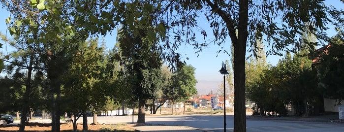 Okçu is one of Kütahya'nın Mahalleleri.